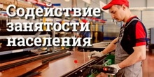 содействие занятости населения